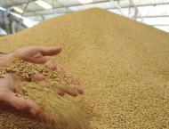 Govt to raise warehouses' wheat storage capacity to 0.6m tons