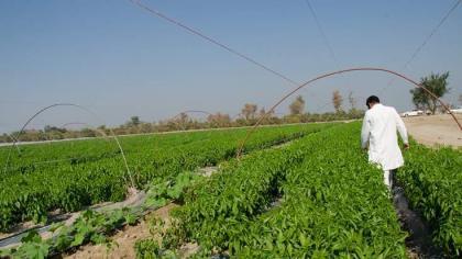 'Efforts under way to improve farming system'