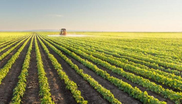 Abu Dhabi gathers agricultural sector leaders to address global food security challenges