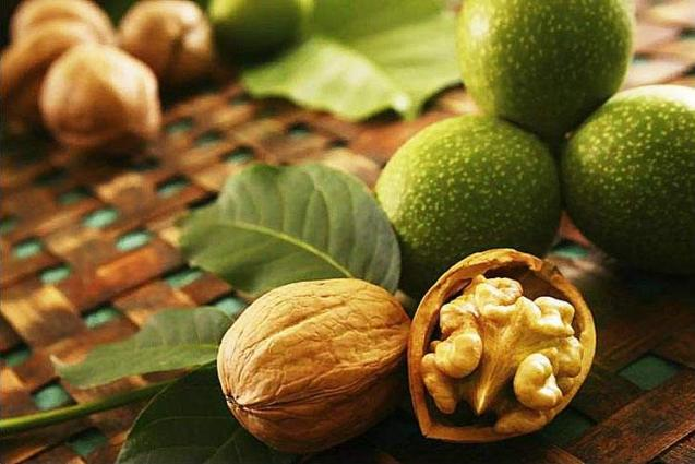 Walnut A Natural Blessing For Hair And Skin - UrduPoint