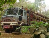 Forest dept seizes huge quantity of smuggled timber
