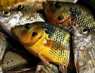 Fish oil cuts heart attack risk, vitamin D lowers odds of cancer  ..