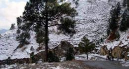 Thunderstorm-rain with snowfall over hills forecast