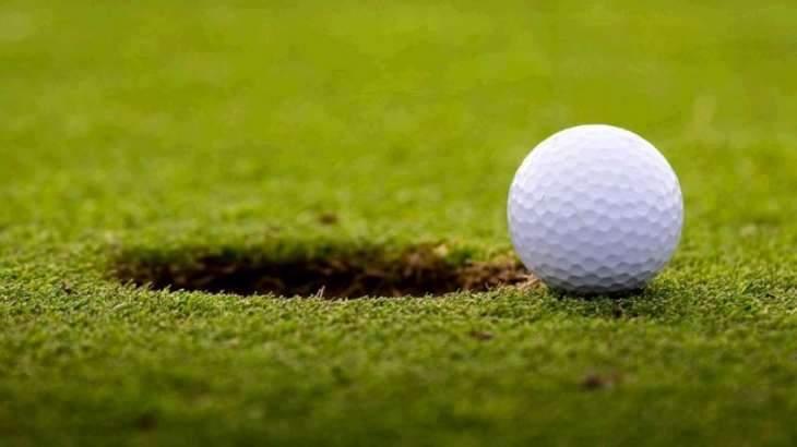 Golf: Nedbank Challenge second round scores