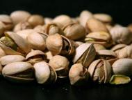 'Iran, US have stiff competition in global pistachio market'