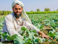 Agriculture experts says increase of agriculture production must  ..