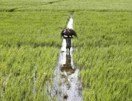 Govt taking strict action against profiteering