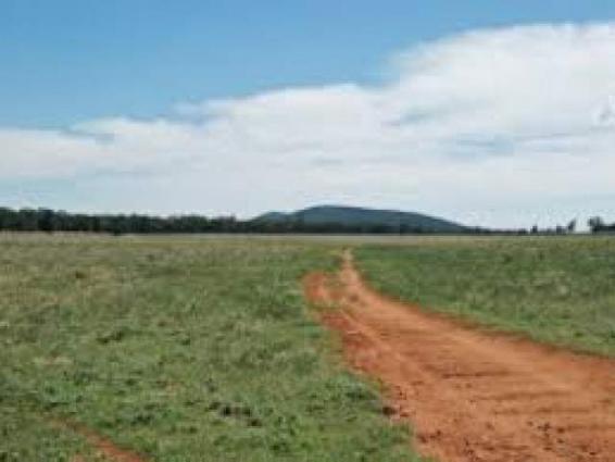 Commissioner Multan directs crackdown against land grabbers