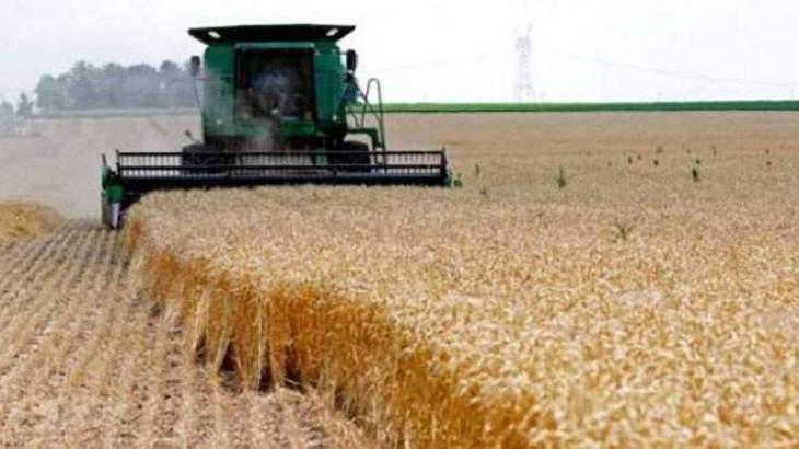 Democracy, financial allocation amid institutional relevance necessary for quality agriculture