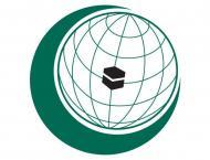 OIC condemns terrorist attempt to bomb churches in Cairo