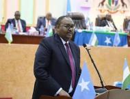 Somalia's Puntland picks ex-minister as regional president