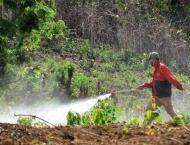 China's breadbasket province to reduce pesticide use