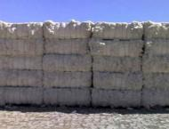 10.4m cotton bales reach ginneries, arrivals down by 7.7pc