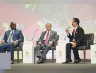 Partnerships key to improving economic development in Africa: DP  ..