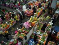 Beijing flower market in blossom ahead of Lunar New Year