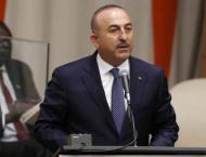 Cavusoglu Describes Assad's Fate as Sole Issue of Ankara-Moscow D ..