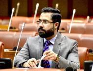 Senate body recommends master plan for erstwhile FATA