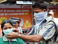 Swine flu scare grips India's capital as 11 deaths reported in Ja ..