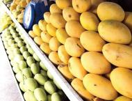 Rain beneficial for crops, mango growers should be cautious