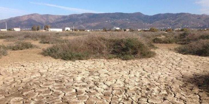 Sindh govt undertaking relief activities in drought hit areas of Tharparkar