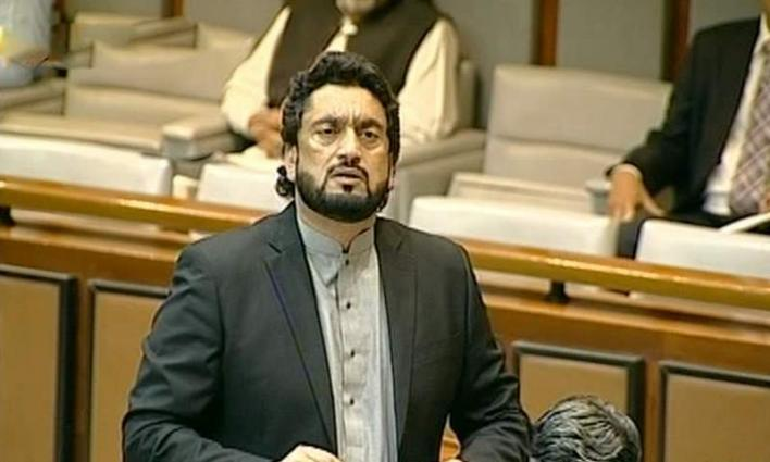 Armed forces vigilant to defend country's frontiers: State Minister for Interior Shehryar Afridi