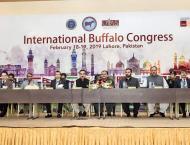 Punjab CM inaugurates International Buffalo Congress and Sino-Pak ..