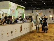 Global equestrian community to meet at Dubai International Horse  ..
