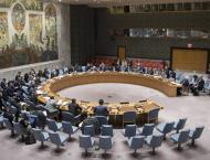 Russia to Veto US Draft Resolution on Venezuela in UN Security Co ..