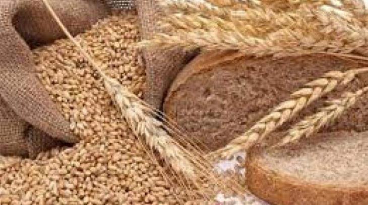Russia, Kazakhstan, Iran Sign Memorandum of Understanding on Wheat Supplies - Statement