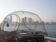 Ministry of Climate Change bans use of gargoor fishing nets in Ab ..