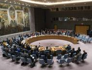 UN Security Council OKs to Ship Cameras for Divided Families' Vid ..