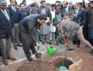 Spring plantation kicks off at NUST; Minister of State for Interi ..