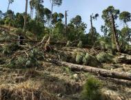 Pakistan lodges complaint in UN against India over eco-terrorism'