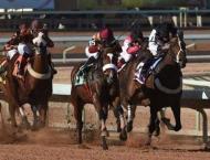 Dubai International Equestrian Conference to discuss UAE-Saudi ef ..