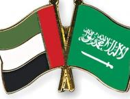 Emirati-Saudi ties reinforce cultural movement: Intellectuals and ..
