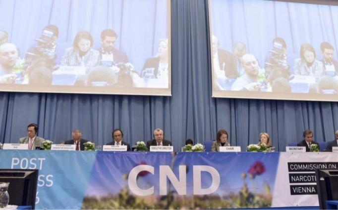 UN Commission on Narcotic Drugs Starts 62 Session in Vienna on Thursday