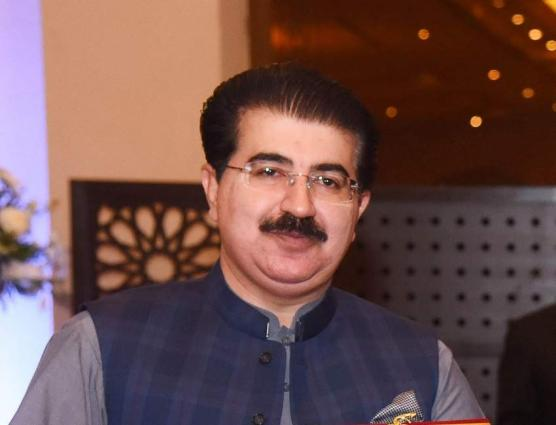 Strong Institutional Linkage must for Effective Implementation of Laws:  Sanjrani