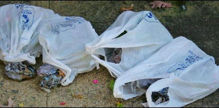 KP govt imposes ban on use of polythene bags, violators to face fine: Yousufzai