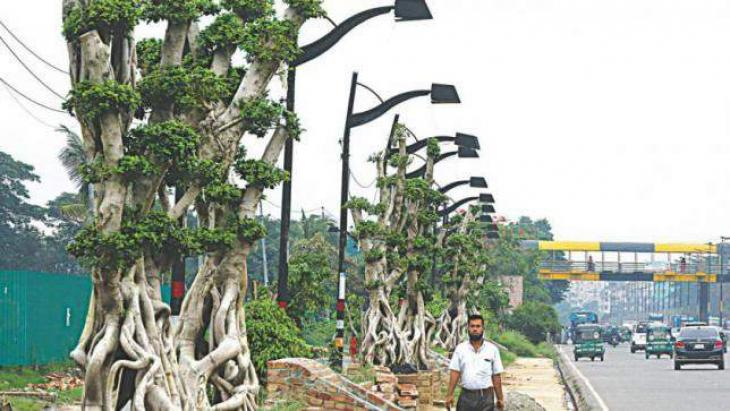Decision taken to beautify  main highways of the city