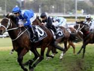 Record-breaking Winx saddles up for final race