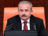 Turkish Parliament Speaker to Attend Summit of Parliaments in Bag ..