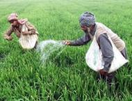 5.2 mln farmers of Punjab being provided subsidy on fertilizers t ..
