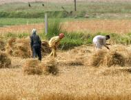 National Assembly 's body for increasing agricultural production