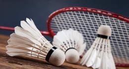 Bahauddin Zakariya University wins intercollegiate girls badminton tournament