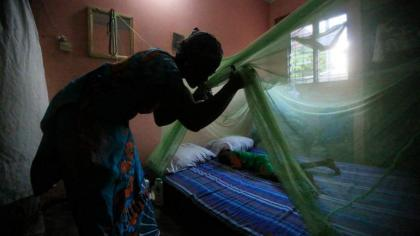 Ministry of Health and Prevention marks World Malaria Day