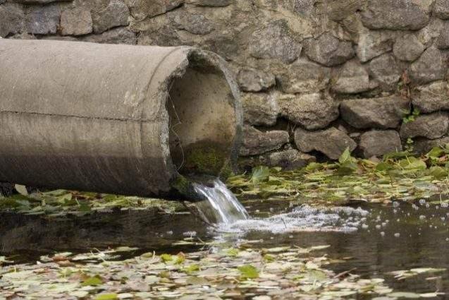 Sewage water samples tested positive for polio virus in Mardan: Senior Minister