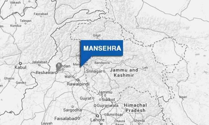 DPO Manshera orders action against Jirga over imposing fine on newlywed couple