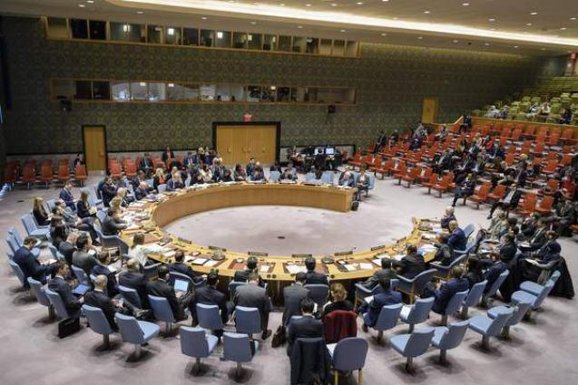 UK-Drafted UNSC Resolution Calls for Immediate Ceasefire in Libya - Document