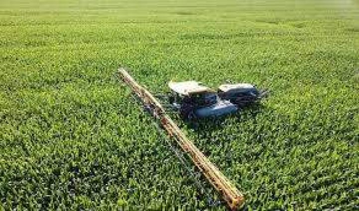 Proper management of crops vital to reduce losses