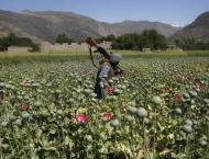 Russian Lower House Urges CSTO to Combat Afghan Drug Trafficking  ..